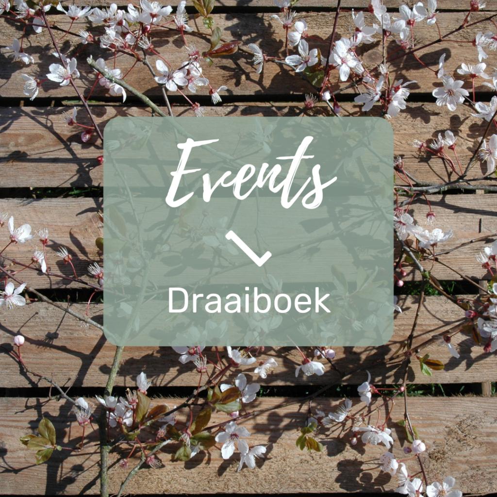 LenteBloesem_het_draaiboek_ hoe_maak_je_die_evenementen_organiseren