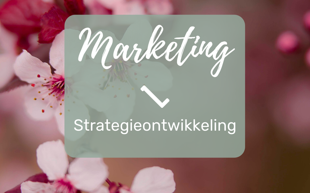 Marketing | Strategieontwikkeling