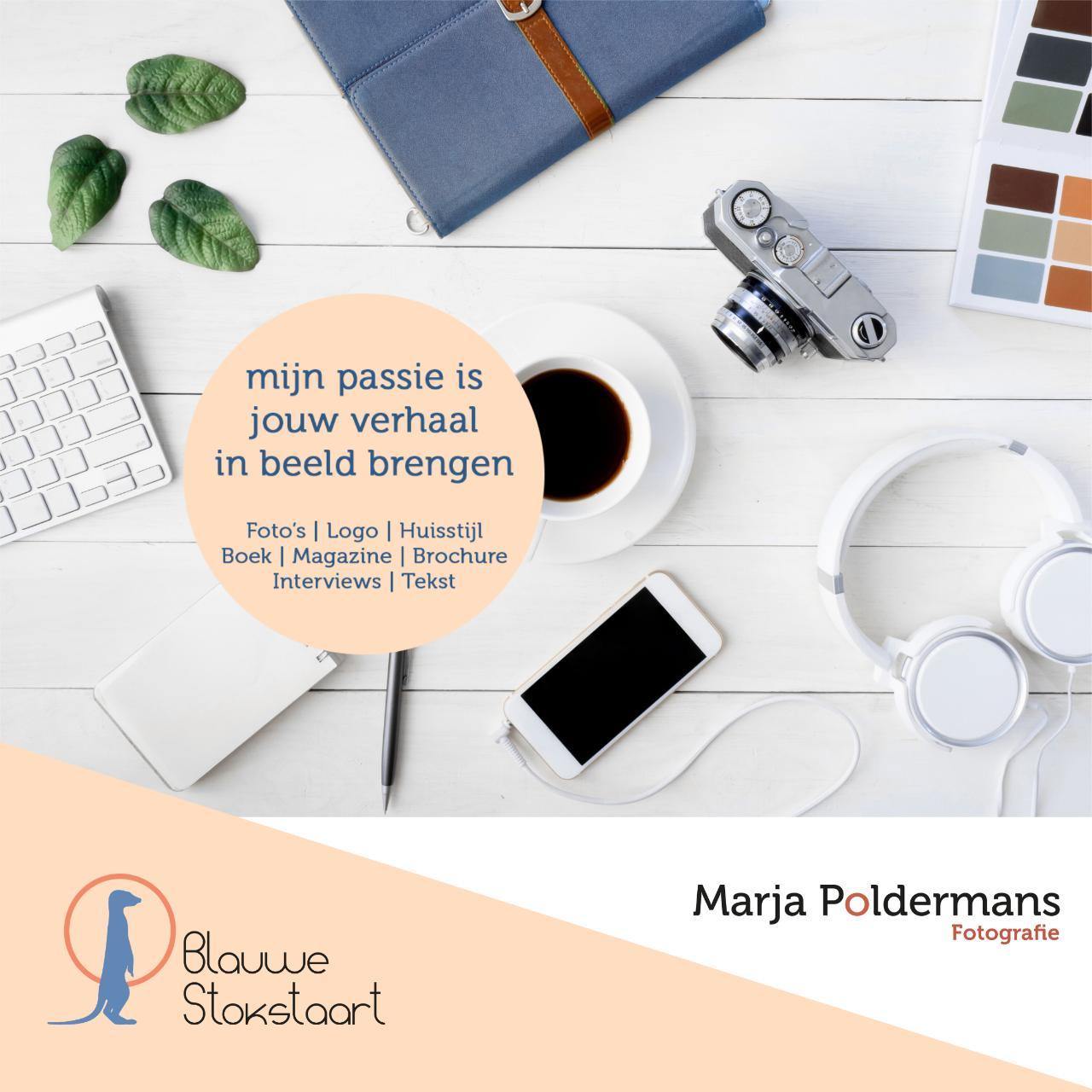 Blauwe Stokstaart - Marja Poldermans