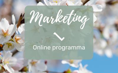 Een online programma: wat is het en hoe maak je het?